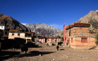 Mystical, Magical and Marvelous Dolpo
