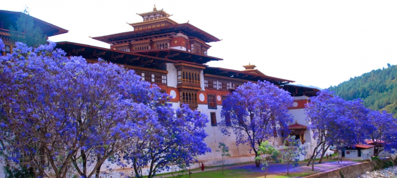 The Spiritual Aura of Punakha